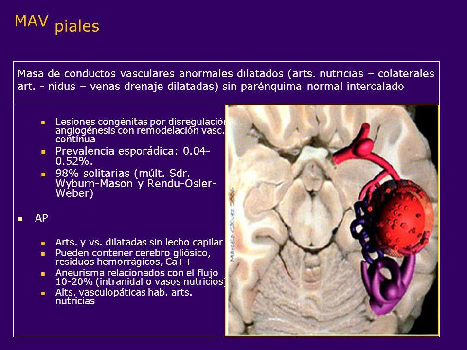 MAV piales Lesiones congénitas por disregulación angiogénesis con remodelación vasc. contínua Prevalencia esporádica: 0.04- 0.52%. 98% solitarias (múl