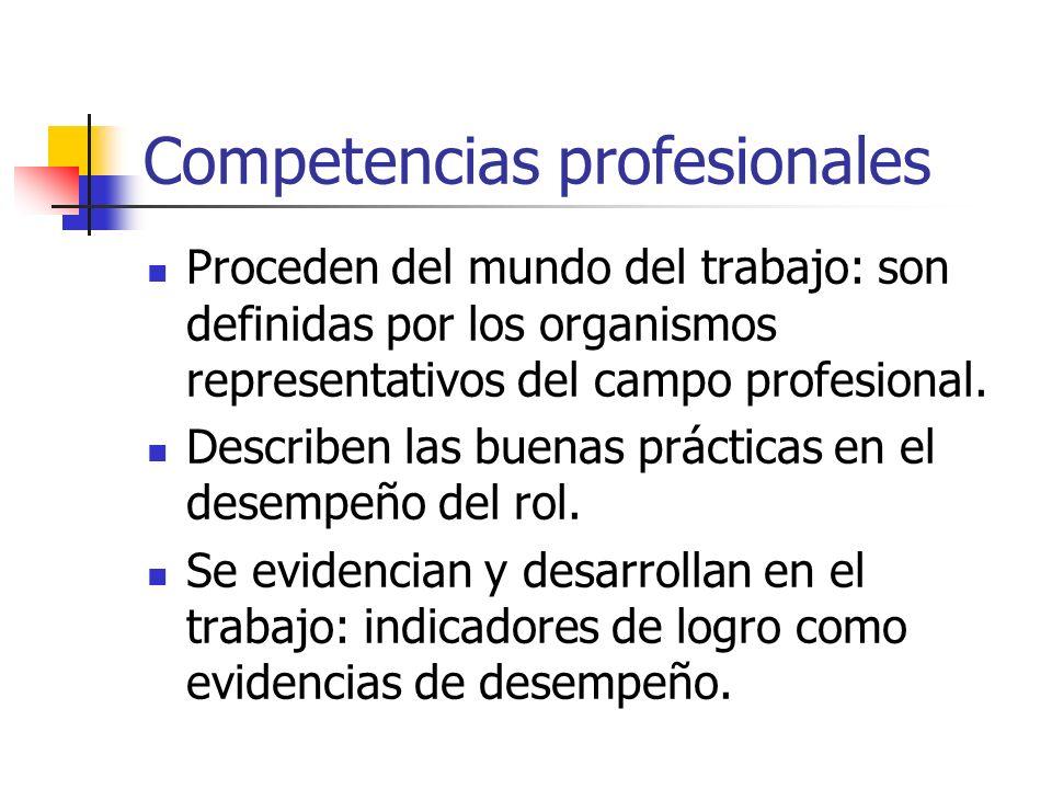 Competencias profesionales Proceden del mundo del trabajo: son definidas por los organismos representativos del campo profesional. Describen las buena