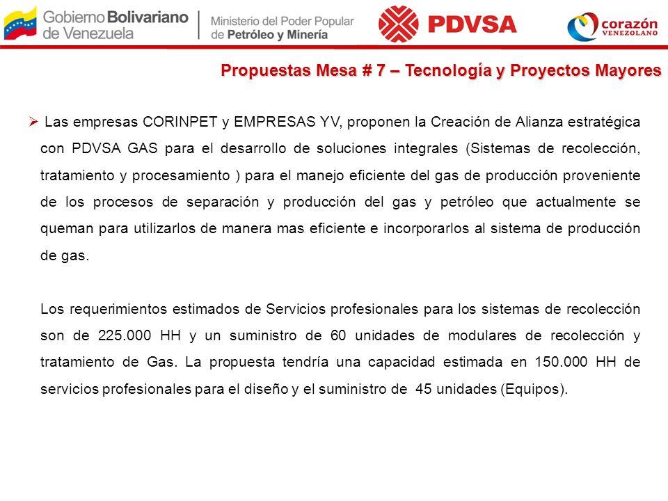 Las empresas CORINPET y EMPRESAS YV, proponen la Creación de Alianza estratégica con PDVSA GAS para el desarrollo de soluciones integrales (Sistemas d
