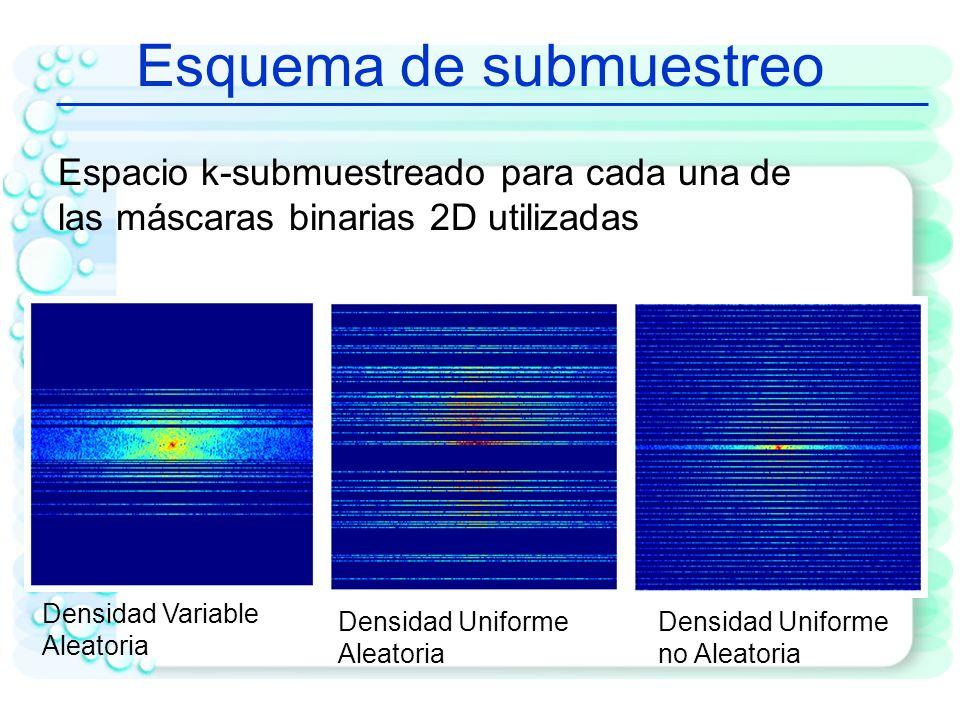Contexto de Aplicación CS a fMRI -El conjunto de mediciones y es una versión submuestreada del espacio k - La reconstrucción se realiza resolviendo el problema de optimización convexo Ψ : Matriz de Transformación (Bases Wavelet) F u = Φ: Transformada de Fourier 2D submuestreada m: imagen; ɛ : magnitud del error en la reconstrucción