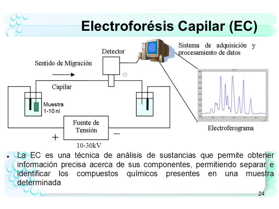 25 Electroferograma