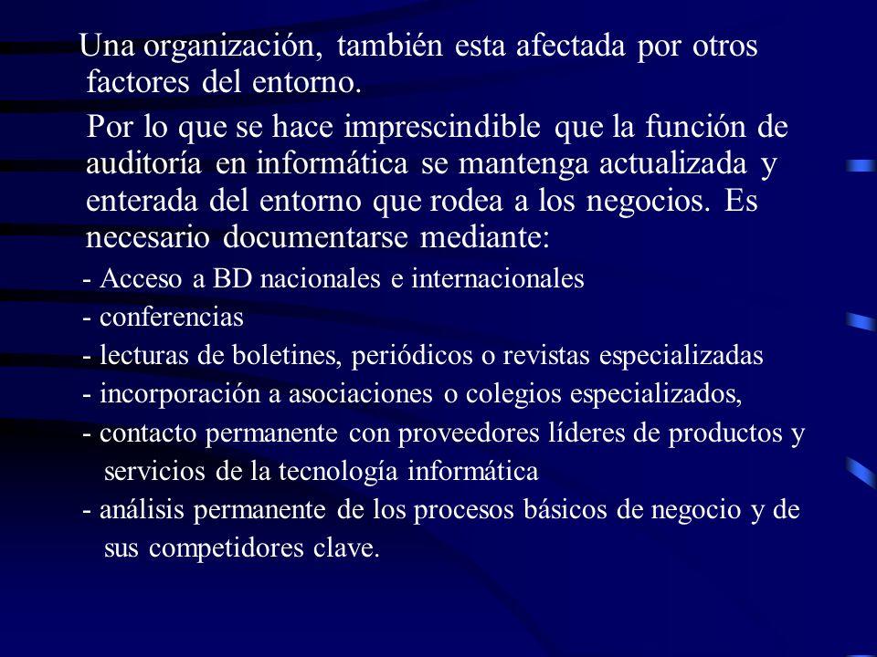 Una organización, también esta afectada por otros factores del entorno. Por lo que se hace imprescindible que la función de auditoría en informática s