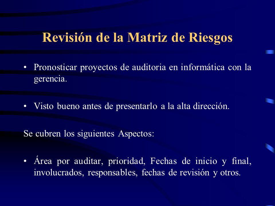 Revisión de la Matriz de Riesgos Pronosticar proyectos de auditoria en informática con la gerencia. Visto bueno antes de presentarlo a la alta direcci