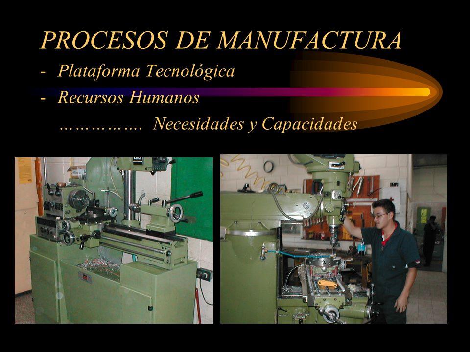 PROCESOS DE MANUFACTURA -Plataforma Tecnológica -Recursos Humanos ……………. Necesidades y Capacidades
