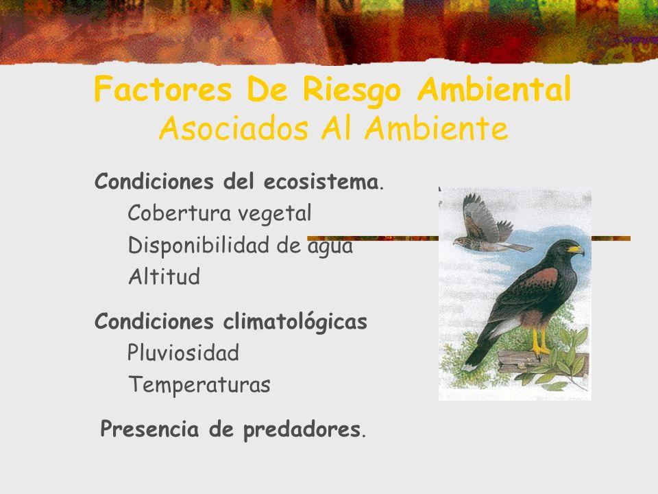 Factores De Riesgo Ambiental Asociados Al Ambiente Condiciones del ecosistema. Cobertura vegetal Disponibilidad de agua Altitud Condiciones climatológ