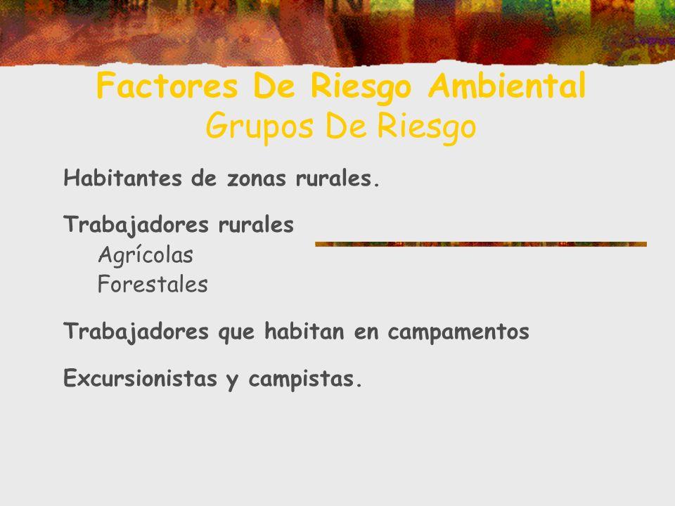 Factores De Riesgo Ambiental Grupos De Riesgo Habitantes de zonas rurales. Trabajadores rurales Agrícolas Forestales Trabajadores que habitan en campa