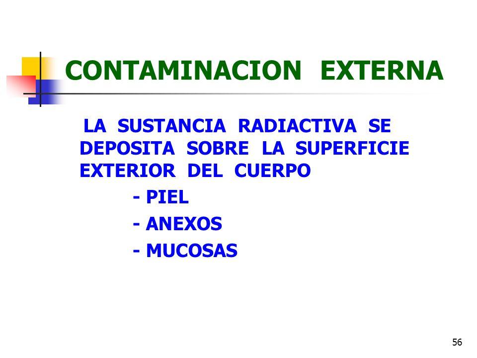 56 CONTAMINACION EXTERNA LA SUSTANCIA RADIACTIVA SE DEPOSITA SOBRE LA SUPERFICIE EXTERIOR DEL CUERPO - PIEL - ANEXOS - MUCOSAS