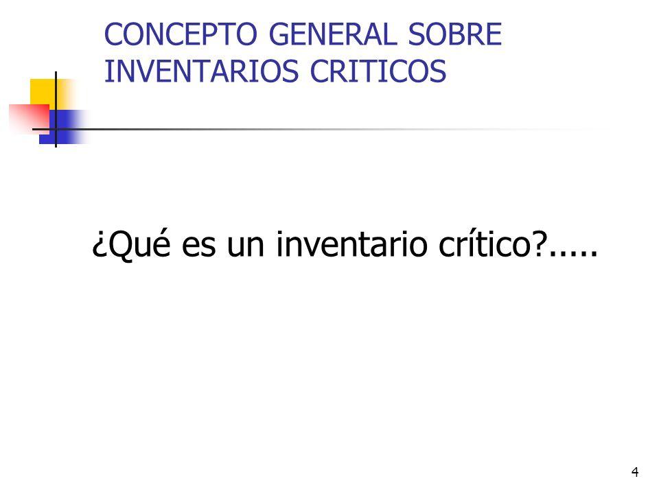 4 CONCEPTO GENERAL SOBRE INVENTARIOS CRITICOS ¿Qué es un inventario crítico?.....