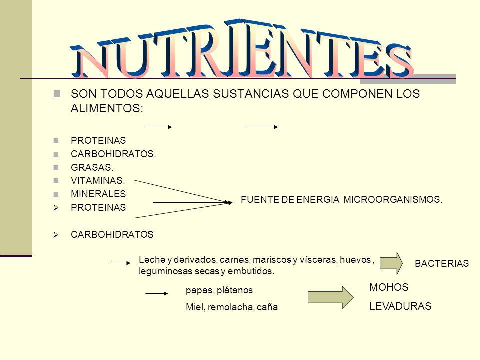 SON TODOS AQUELLAS SUSTANCIAS QUE COMPONEN LOS ALIMENTOS: PROTEINAS CARBOHIDRATOS. GRASAS. VITAMINAS. MINERALES PROTEINAS CARBOHIDRATOS FUENTE DE ENER