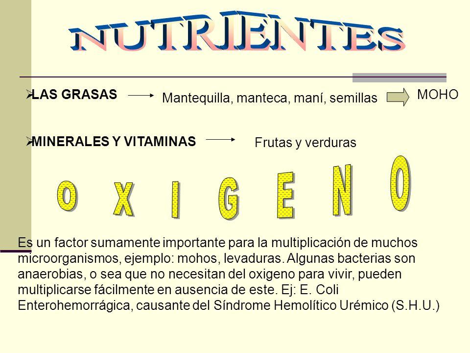 Mantequilla, manteca, maní, semillas LAS GRASAS MINERALES Y VITAMINAS MOHO Frutas y verduras Es un factor sumamente importante para la multiplicación