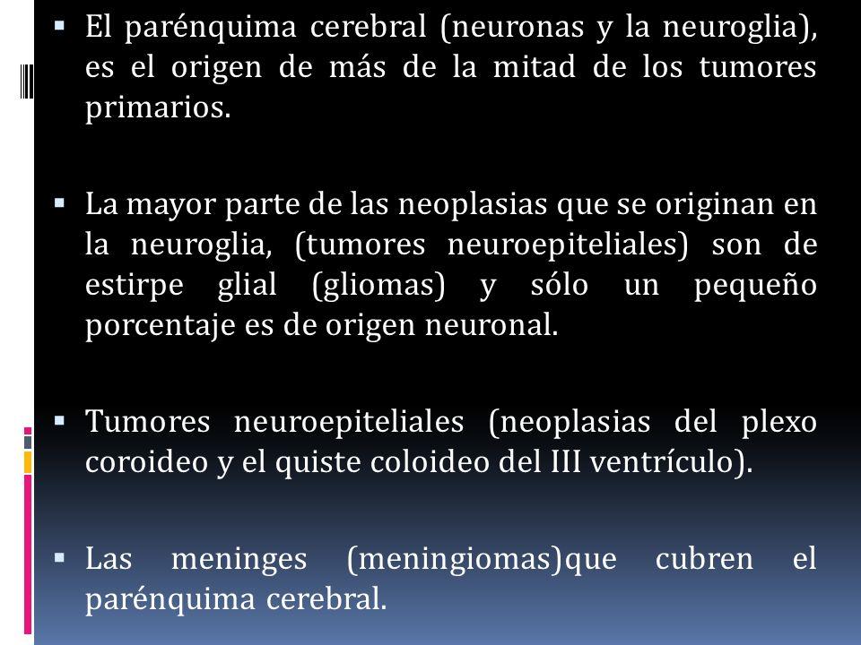 El parénquima cerebral (neuronas y la neuroglia), es el origen de más de la mitad de los tumores primarios. La mayor parte de las neoplasias que se or