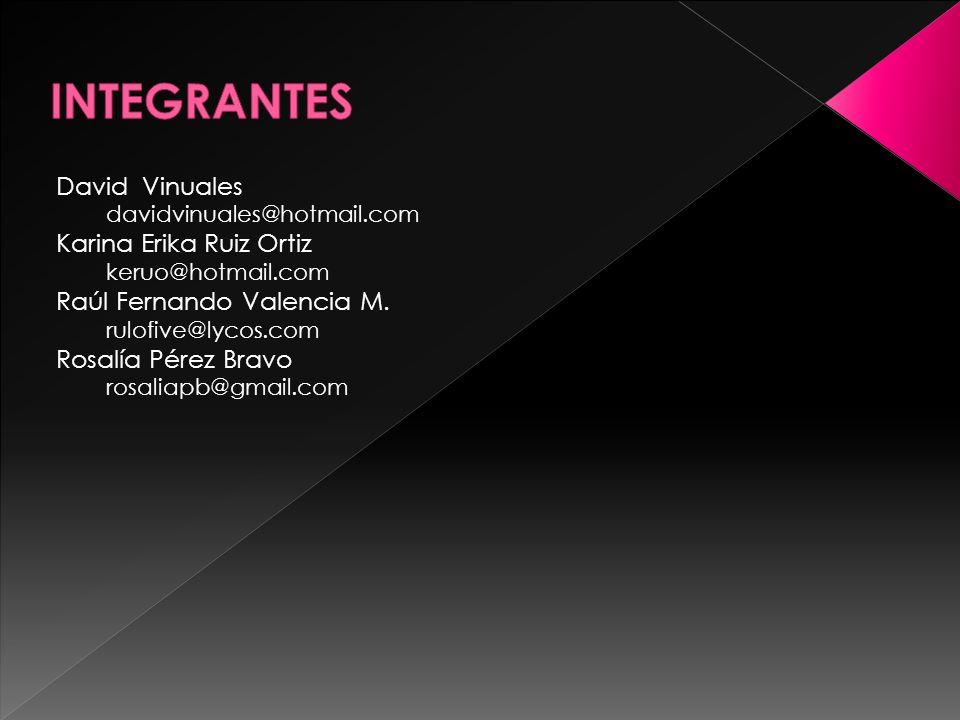 David Vinuales davidvinuales@hotmail.com Karina Erika Ruiz Ortiz keruo@hotmail.com Raúl Fernando Valencia M.