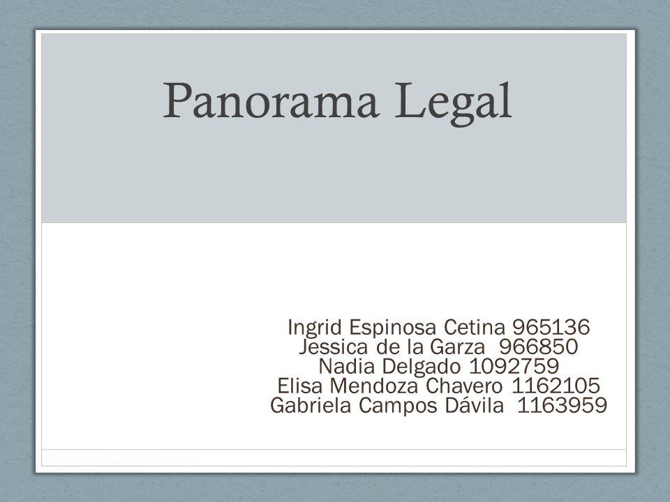 Panorama Legal Ingrid Espinosa Cetina 965136 Jessica de la Garza 966850 Nadia Delgado 1092759 Elisa Mendoza Chavero 1162105 Gabriela Campos Dávila 116
