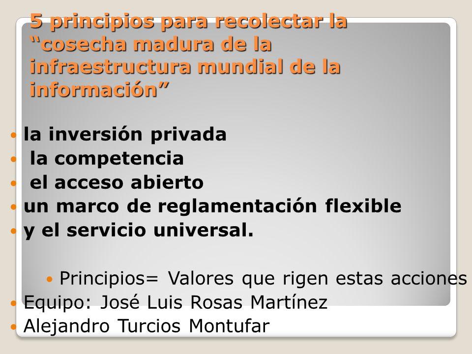 5 principios para recolectar lacosecha madura de la infraestructura mundial de la información la inversión privada la competencia el acceso abierto un marco de reglamentación flexible y el servicio universal.