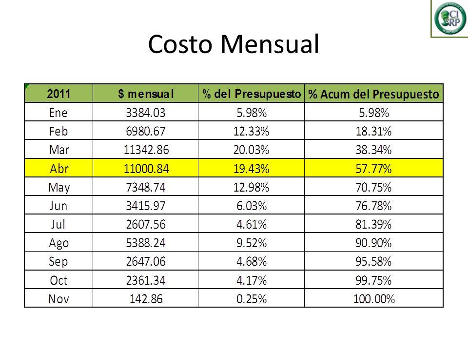 Costo Mensual