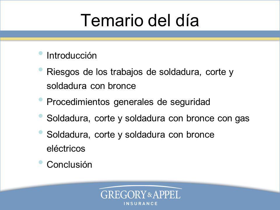 Temario del día Introducción Riesgos de los trabajos de soldadura, corte y soldadura con bronce Procedimientos generales de seguridad Soldadura, corte