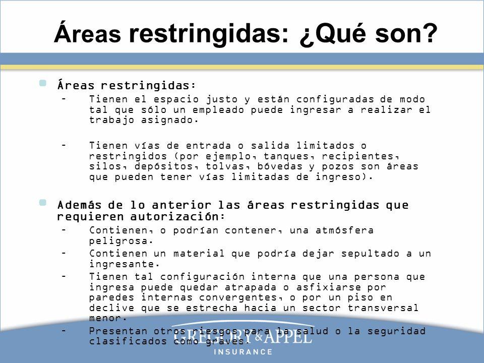 Áreas restringidas: ¿Qué son? Áreas restringidas: –Tienen el espacio justo y están configuradas de modo tal que sólo un empleado puede ingresar a real