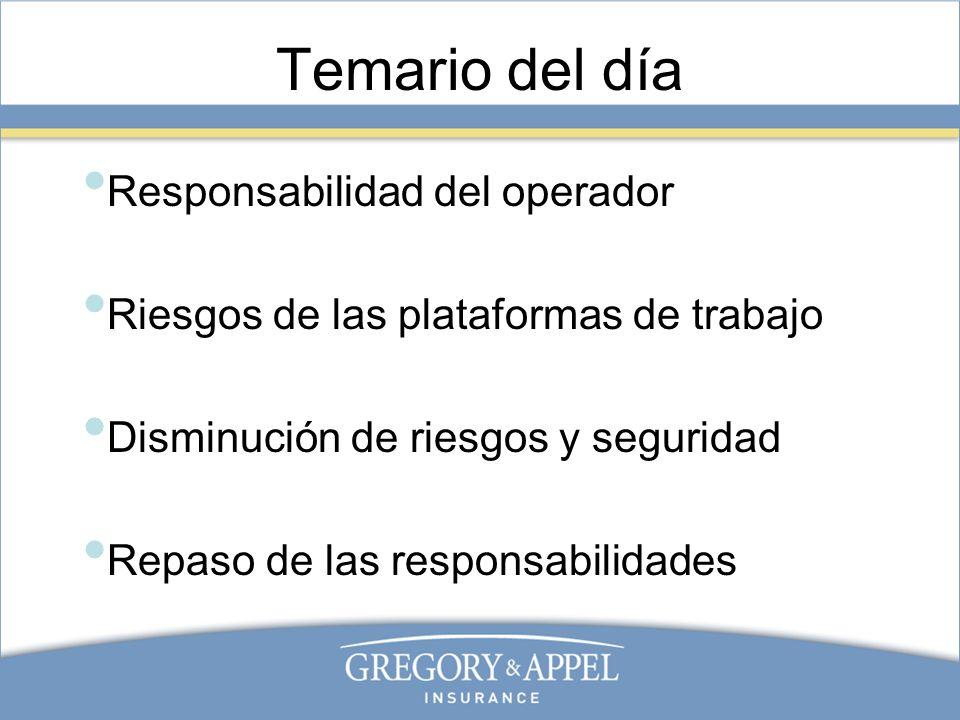Temario del día Responsabilidad del operador Riesgos de las plataformas de trabajo Disminución de riesgos y seguridad Repaso de las responsabilidades