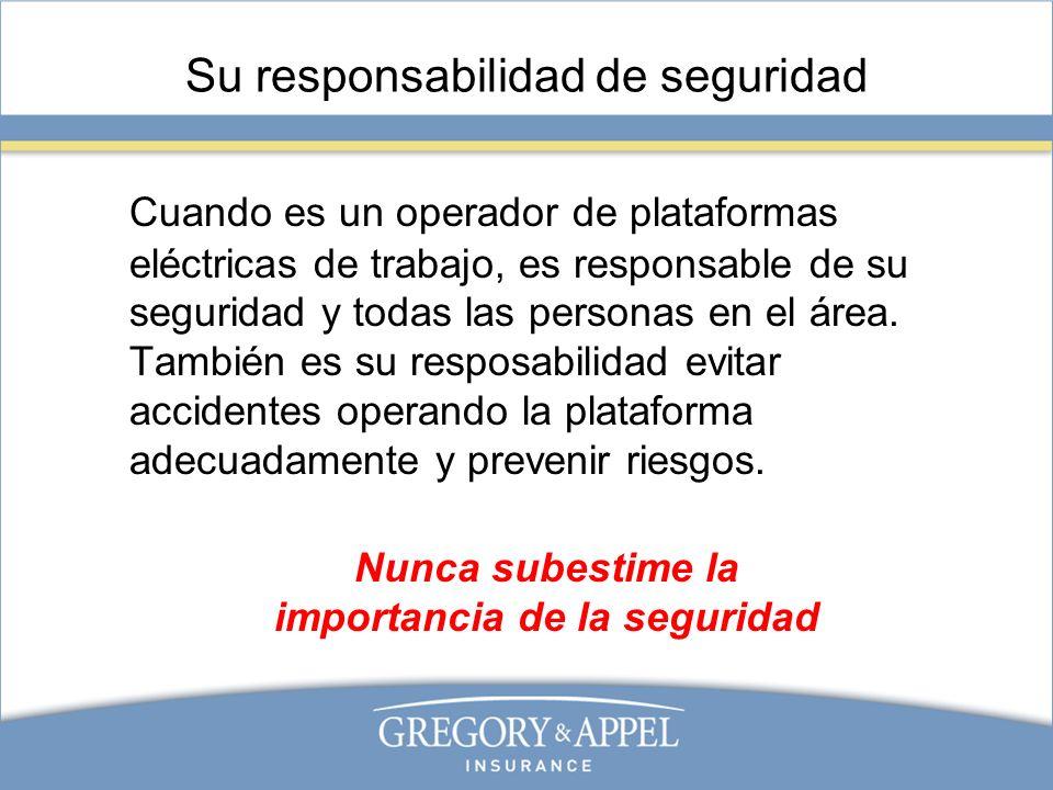 Su responsabilidad de seguridad Cuando es un operador de plataformas eléctricas de trabajo, es responsable de su seguridad y todas las personas en el