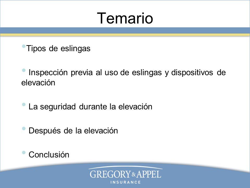 Temario Tipos de eslingas Inspección previa al uso de eslingas y dispositivos de elevación La seguridad durante la elevación Después de la elevación C