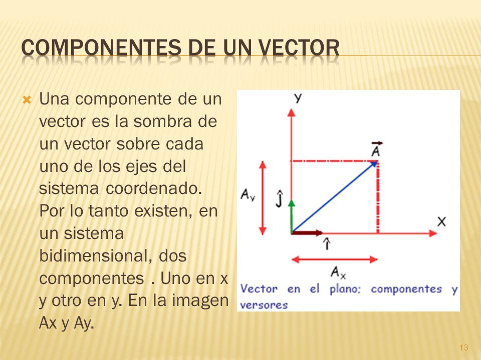 Una componente de un vector es la sombra de un vector sobre cada uno de los ejes del sistema coordenado. Por lo tanto existen, en un sistema bidimensi