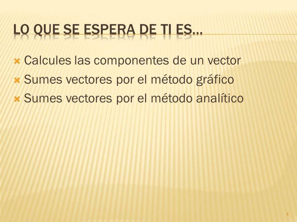 Calcules las componentes de un vector Sumes vectores por el método gráfico Sumes vectores por el método analítico 4