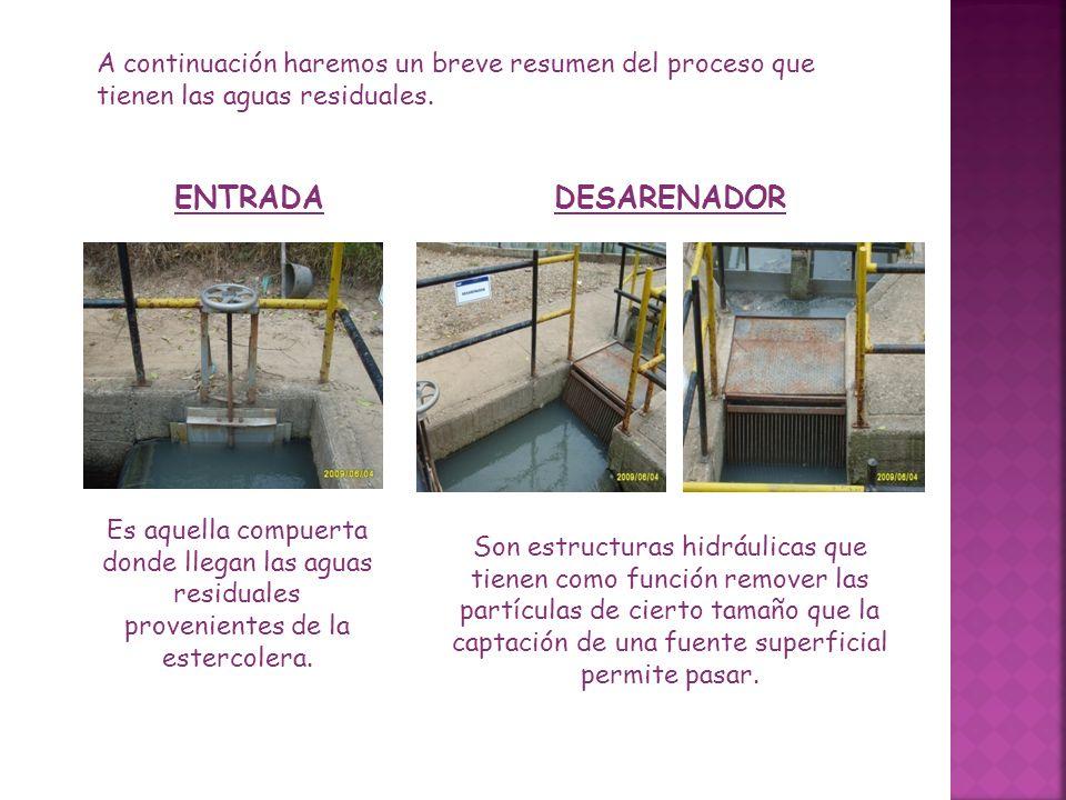 A continuación haremos un breve resumen del proceso que tienen las aguas residuales. ENTRADADESARENADOR Es aquella compuerta donde llegan las aguas re