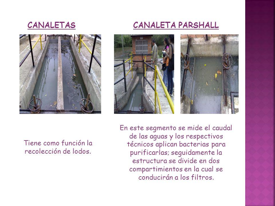 CANALETAS Tiene como función la recolección de lodos. CANALETA PARSHALL En este segmento se mide el caudal de las aguas y los respectivos técnicos apl