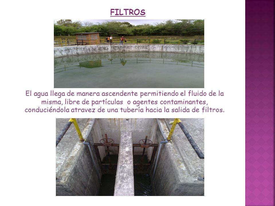 FILTROS El agua llega de manera ascendente permitiendo el fluido de la misma, libre de partículas o agentes contaminantes, conduciéndola atravez de un
