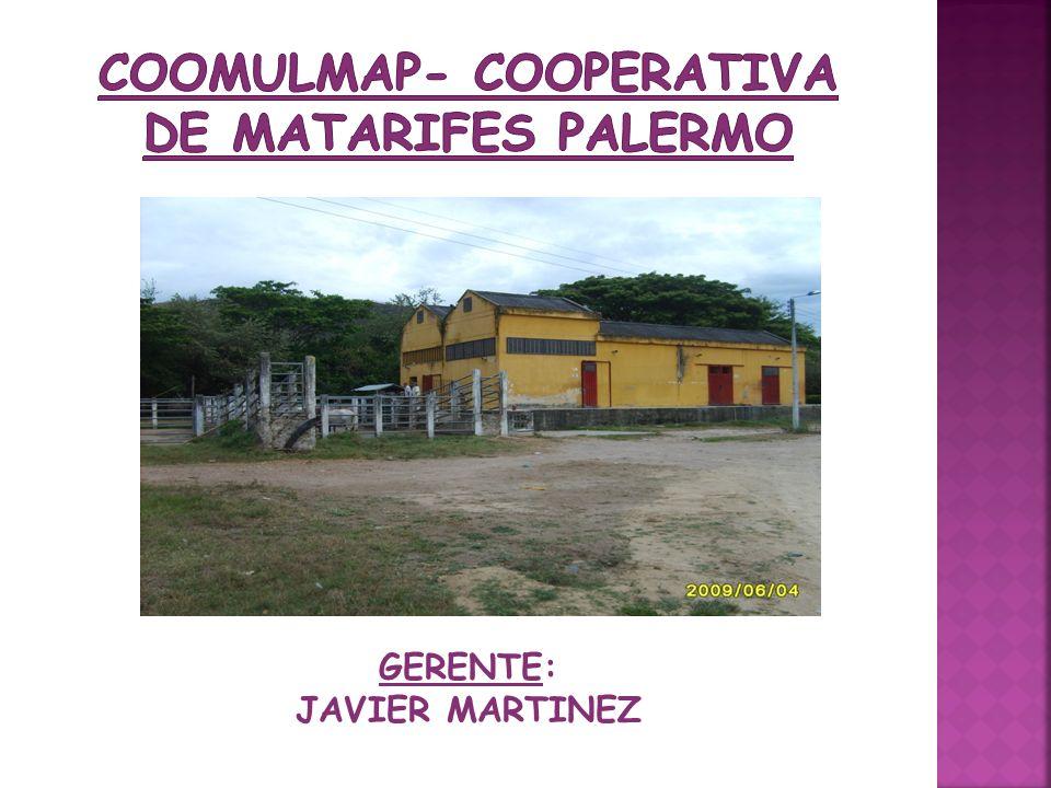 GERENTE: JAVIER MARTINEZ