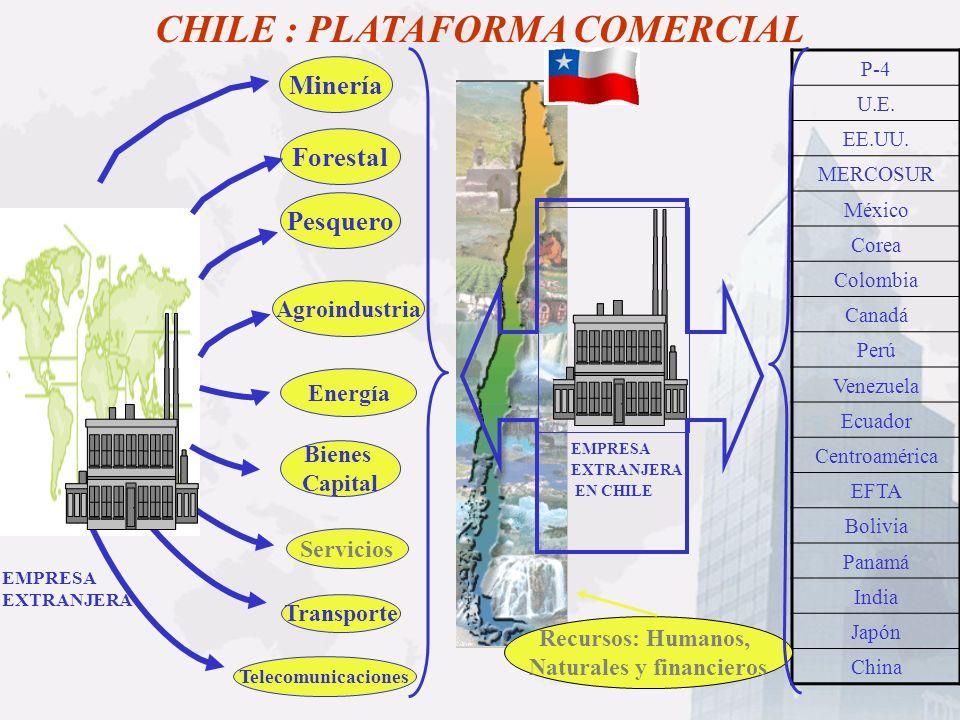 ForestalMinería Bienes Capital Servicios Transporte Telecomunicaciones CHILE : PLATAFORMA COMERCIAL Energía Pesquero Agroindustria P-4 U.E. EE.UU. MER