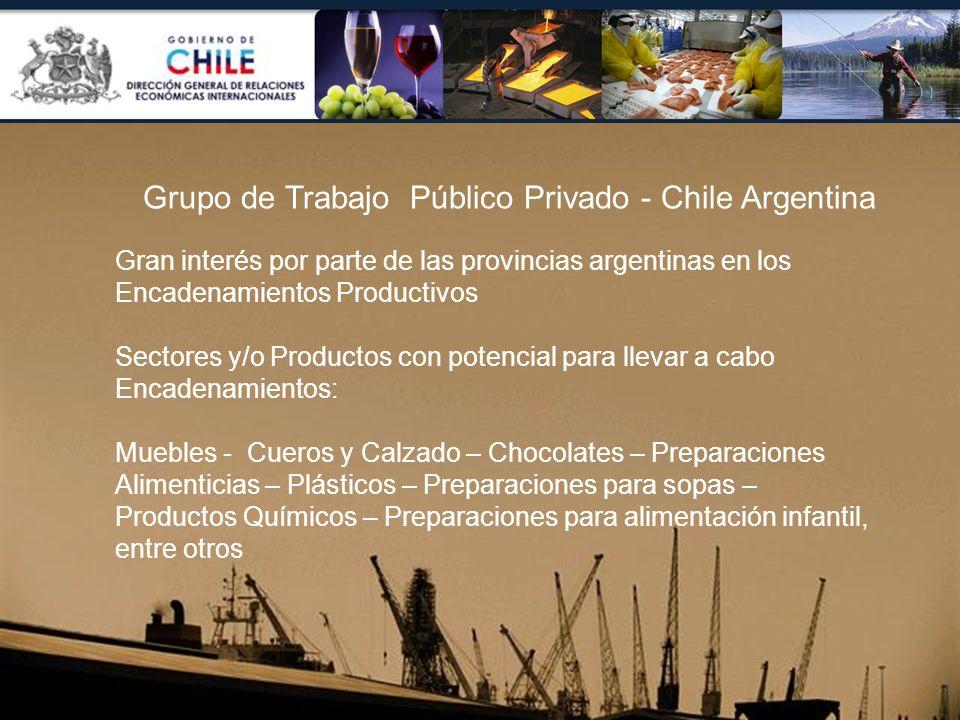 Grupo de Trabajo Público Privado - Chile Argentina Gran interés por parte de las provincias argentinas en los Encadenamientos Productivos Sectores y/o