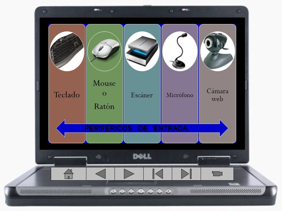 Teclado Mouse o Ratón Escáner Micrófono Cámara web PERIFÉRICOS DE ENTRADA