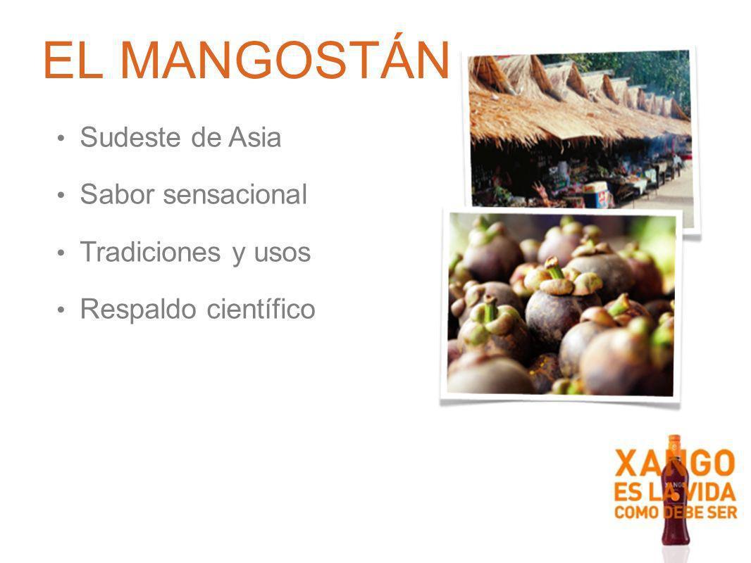 Corteza rica en nutrientes Pulpa blanca deliciosa De tres a cinco semillas De tres a cinco semillasAntioxidantes llamados xantonas Corteza Pulpa EL MANGOSTÁN