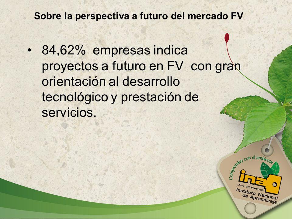 84,62% empresas indica proyectos a futuro en FV con gran orientación al desarrollo tecnológico y prestación de servicios. Sobre la perspectiva a futur