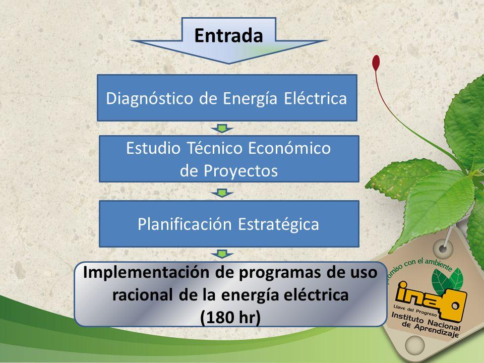 Entrada Diagnóstico de Energía Eléctrica Estudio Técnico Económico de Proyectos Planificación Estratégica Implementación de programas de uso racional