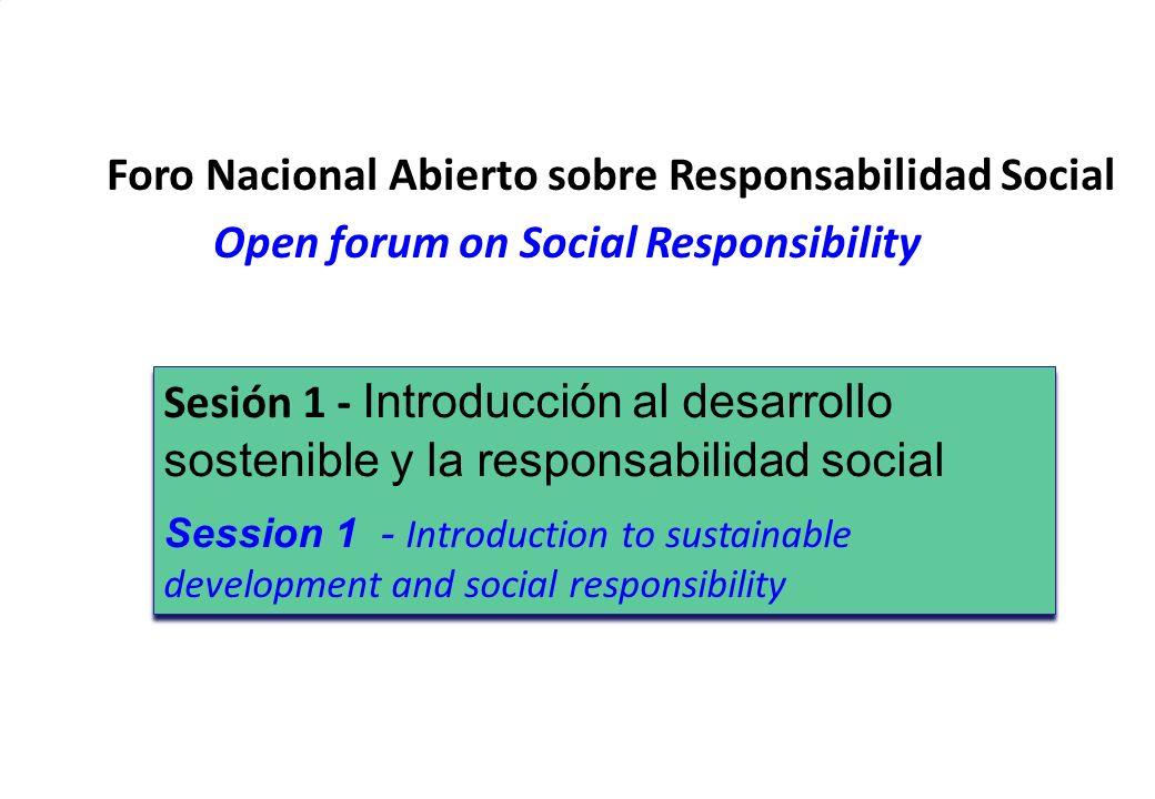3 DEVT 2009 Eng. Perla Puterman Workshop on SR San Jose de Costa Rica, Nov 2009 Foro Nacional Abierto sobre Responsabilidad Social Open forum on Socia