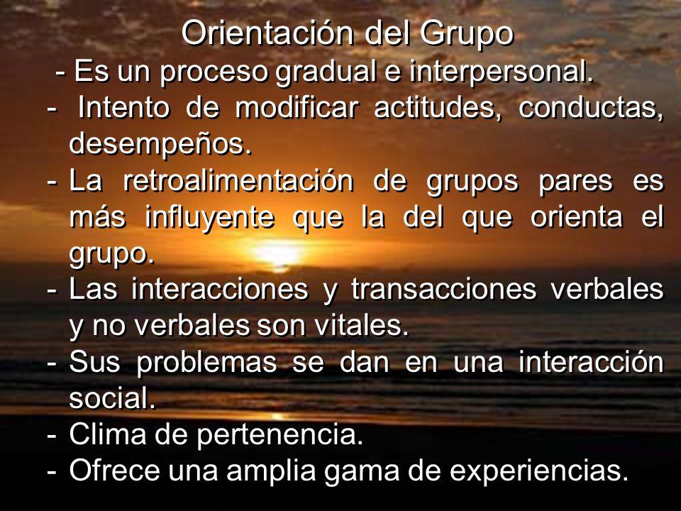 Orientación del Grupo - Es un proceso gradual e interpersonal. - Intento de modificar actitudes, conductas, desempeños. -La retroalimentación de grupo