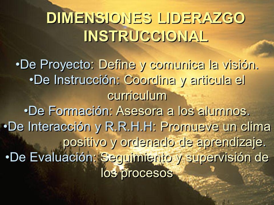 De Proyecto: Define y comunica la visión. De Instrucción: Coordina y articula el curriculum De Formación: Asesora a los alumnos. De Interacción y R.R.