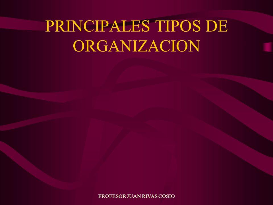 PROFESOR JUAN RIVAS COSIO PRINCIPALES TIPOS DE ORGANIZACION