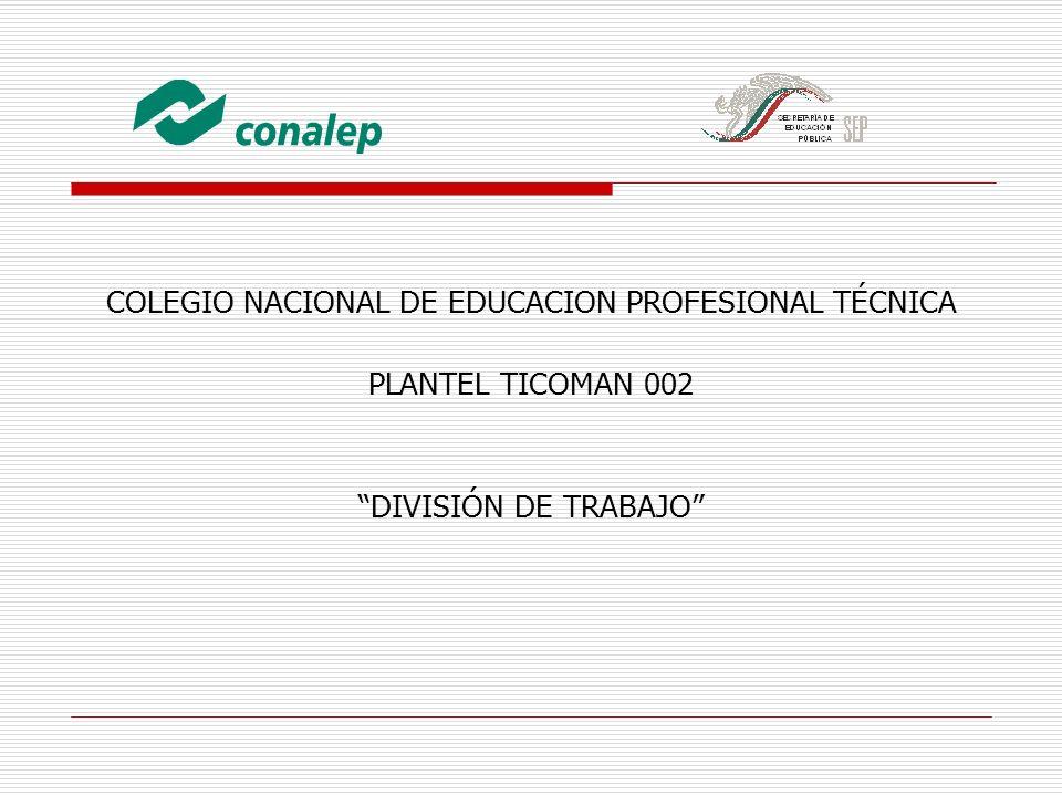 COLEGIO NACIONAL DE EDUCACION PROFESIONAL TÉCNICA PLANTEL TICOMAN 002 DIVISIÓN DE TRABAJO