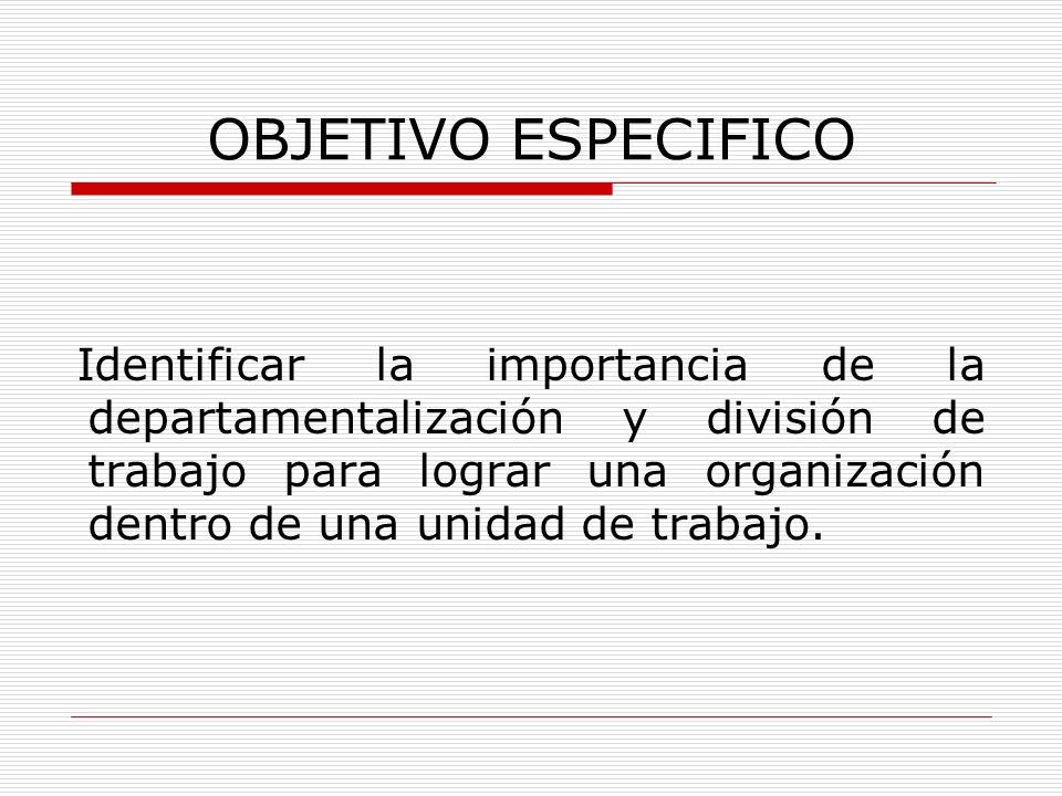 OBJETIVO ESPECIFICO Identificar la importancia de la departamentalización y división de trabajo para lograr una organización dentro de una unidad de t