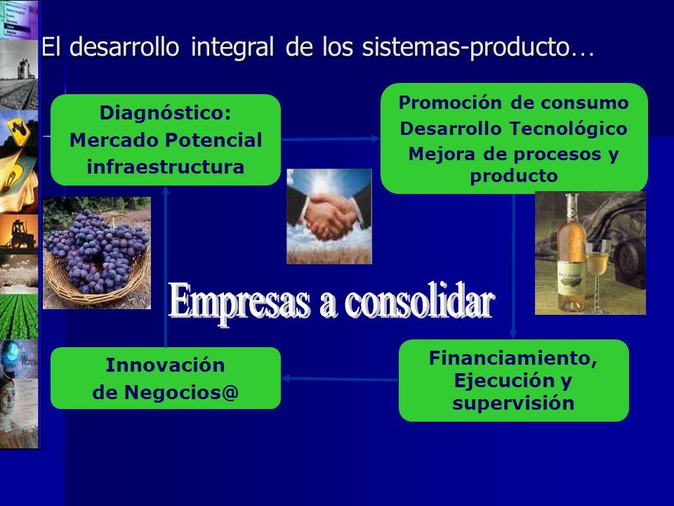 El desarrollo integral de los sistemas-producto … Financiamiento, Ejecución y supervisión Promoción de consumo Desarrollo Tecnológico Mejora de proces