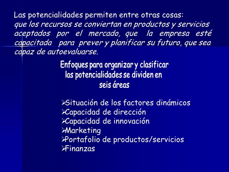 Las potencialidades permiten entre otras cosas: que los recursos se conviertan en productos y servicios aceptados por el mercado, que la empresa esté