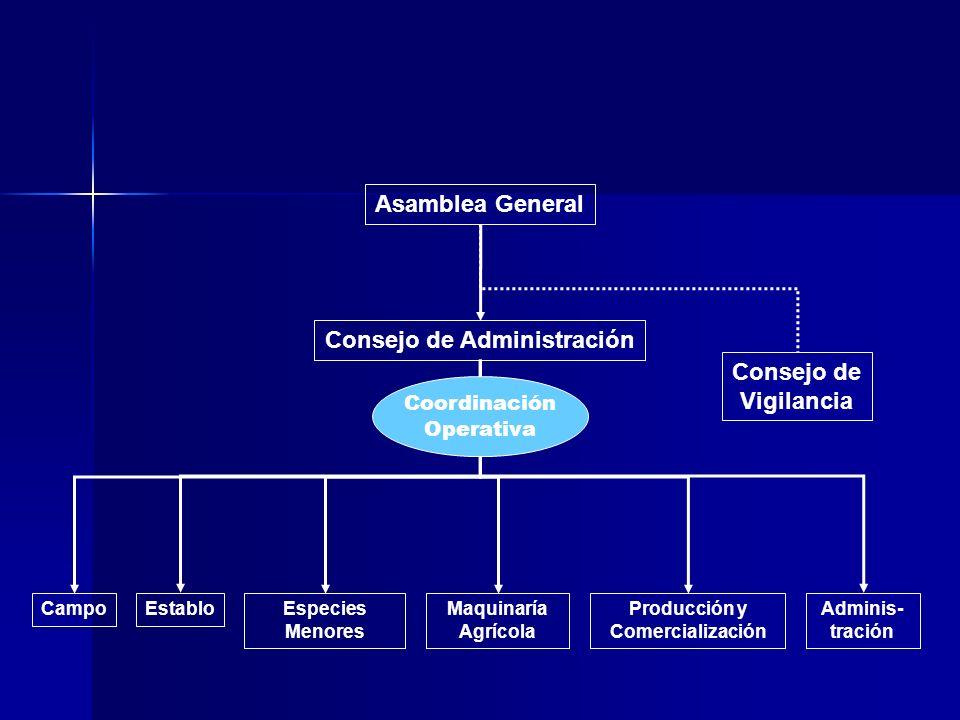 Asamblea General Consejo de Administración CampoEstabloProducción y Comercialización Especies Menores Maquinaría Agrícola Adminis- tración Consejo de
