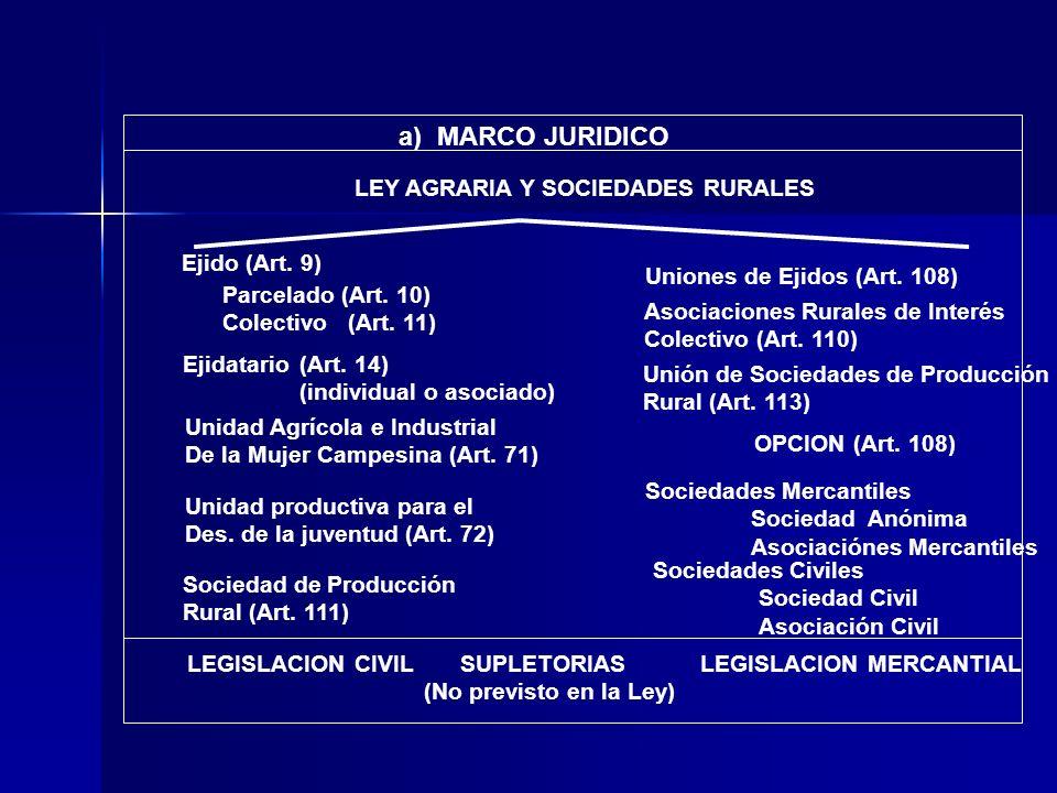 LEY AGRARIA Y SOCIEDADES RURALES a) MARCO JURIDICO LEGISLACION CIVILSUPLETORIAS (No previsto en la Ley) LEGISLACION MERCANTIAL Ejidatario Ejido (Art.