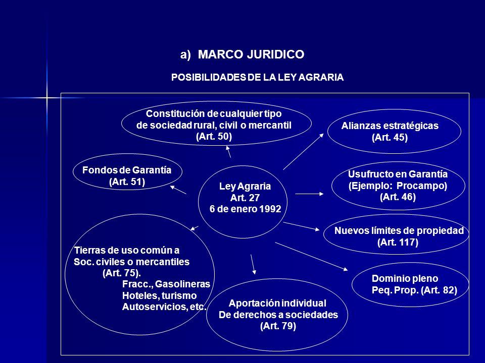 Ley Agraria Art. 27 6 de enero 1992 Alianzas estratégicas (Art. 45) Usufructo en Garantía (Ejemplo: Procampo) (Art. 46) Nuevos límites de propiedad (A