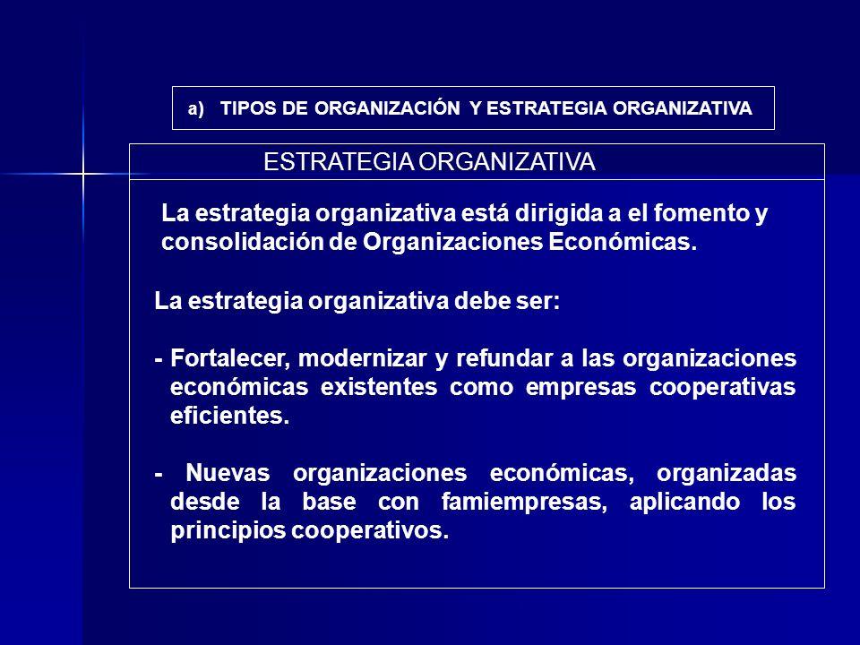 a ) TIPOS DE ORGANIZACIÓN Y ESTRATEGIA ORGANIZATIVA La estrategia organizativa debe ser: - Fortalecer, modernizar y refundar a las organizaciones econ