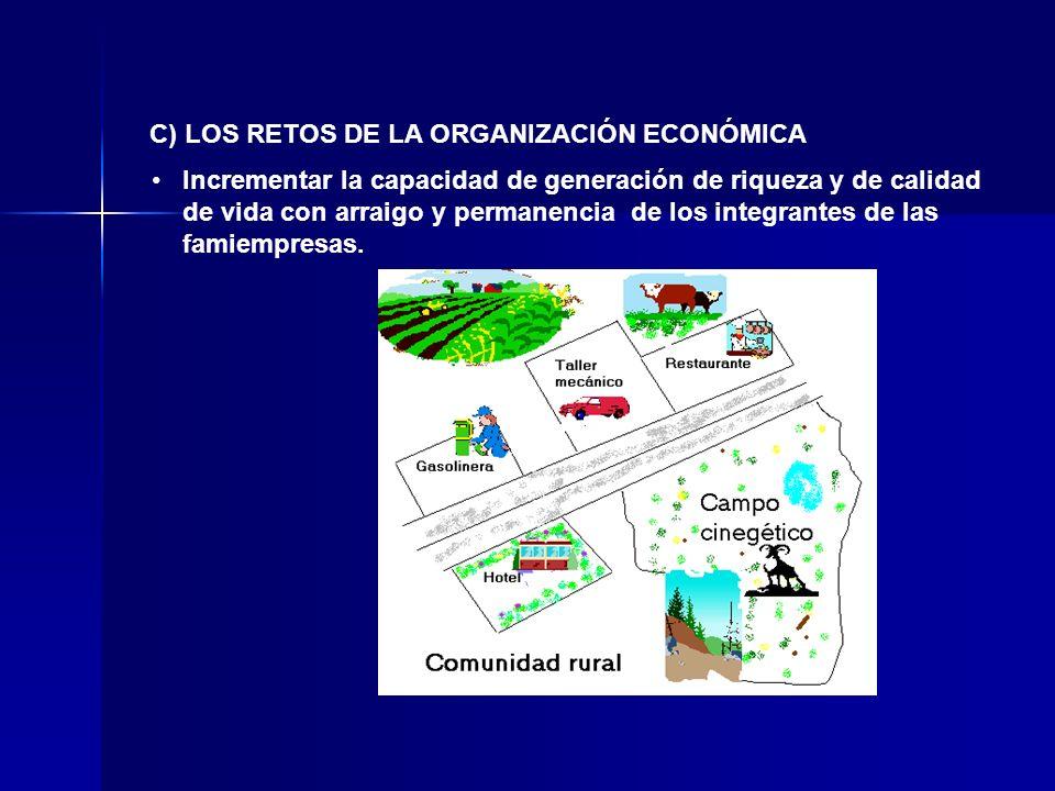 Incrementar la capacidad de generación de riqueza y de calidad de vida con arraigo y permanencia de los integrantes de las famiempresas. C) LOS RETOS