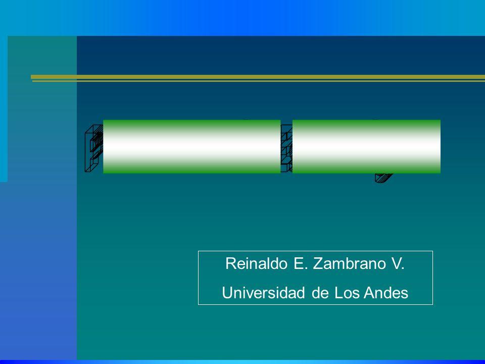 Reinaldo E. Zambrano V. Universidad de Los Andes